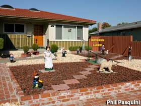 Lawn Conversion-Transformation Tips - How To   Native Plant ...