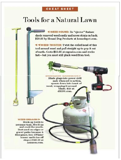 Tools for a Natural Lawn