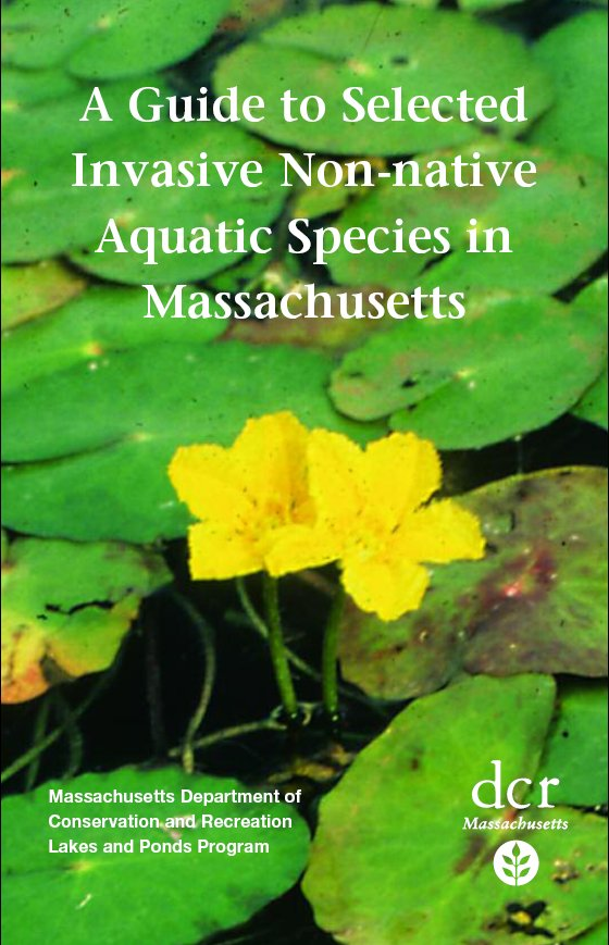 Guide to Invasive Non-native Aquatic Species in Massachusetts