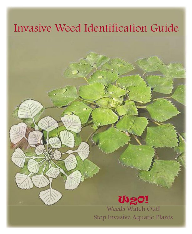 Invasive Aquatic Weed ID Guide